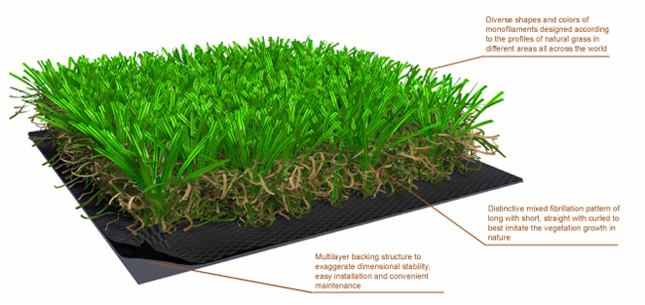 Graphic-of-Grass