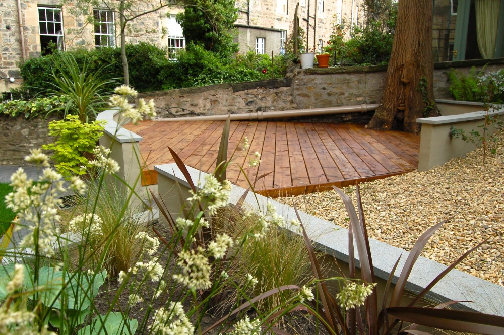 Modern, Newtown garden